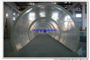 Large Acrylic Aquarium Tunnel pictures & photos