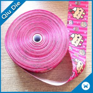 China Factory Direct Wholesales Color Garment Accessories Polyester Ribbon Webbing pictures & photos