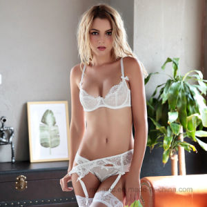 New Hot Selling Ladies Lace Panty and Bra pictures & photos