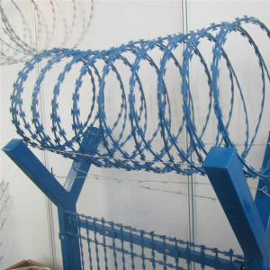 Hot Sale Stainless Steel Concertina Razor Wire pictures & photos