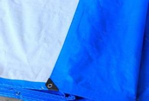 Cheap PE Tarp with Good Quality pictures & photos