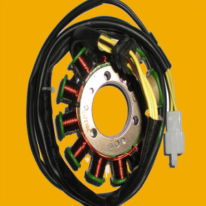 Patagonia250 Motorbike Stator, Motorcycle Stator for Auto pictures & photos