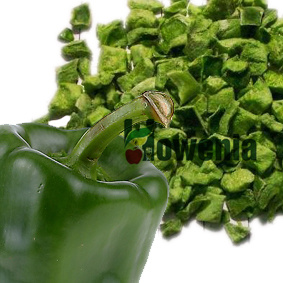 Healthy Freeze Dried Green Bell Pepper