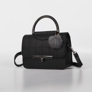 Europe Style Brand Name Ladies Hand Bag (30081) pictures & photos
