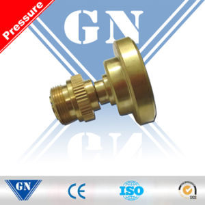 Cx-Mini-Pg Digital Tire Gauge Mini Tire Pressure Gauge (CX-MINI-PG) pictures & photos