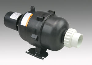 Air Blower Pump (APW) with USA Market Standard pictures & photos
