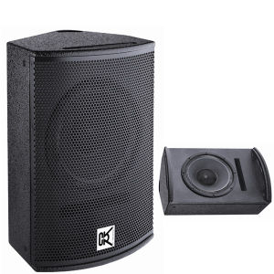High Performance PA Speaker for Night Club Equipment (T-121) pictures & photos