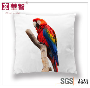 18 Inch Sofa Cushion Printed pictures & photos