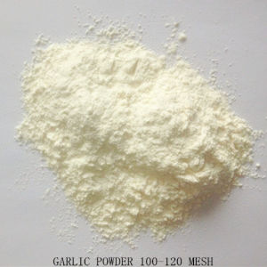Dehydrated Garlic Powder 100-120 Mesh From Factory pictures & photos