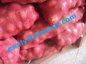 Fresh Red Onion Packed with 5/10/20kg Mesh Bag pictures & photos