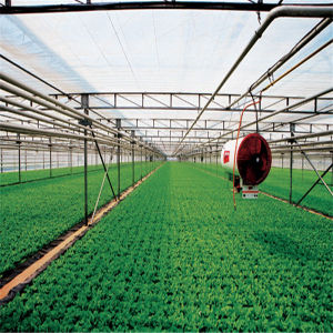 Hot Sale High Light Transimttance Clean Film Greenhouse pictures & photos