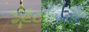 Agricultural Pivot Irrigation System Sprinkler China Manufacturer pictures & photos