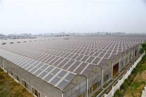 Photovoltaic Greenhouse for Agricultural Planting pictures & photos