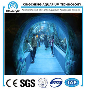 Customized Large Acrylic Aquarium Tunnel for Acrylic Tunnel Project pictures & photos