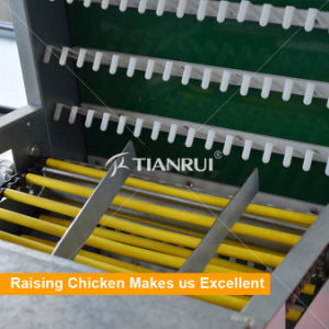 Hot Selling Low Price Automatic Chicken Egg Layer Machine pictures & photos