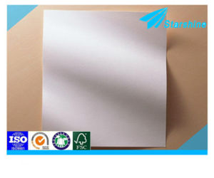 Coated Ivory Paper Board for Packaging and Printing