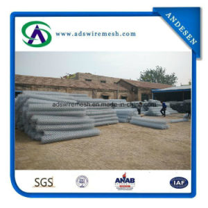 2.7mm Galvanized Chain Link Fence with Competitive Price (Hot & Exporter) pictures & photos