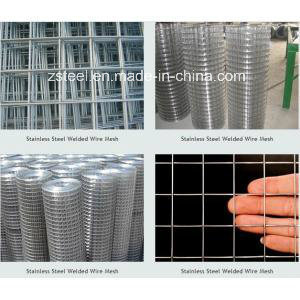 PVC Coated 304 Stainless Steel Mesh (welded wire mesh)
