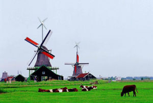 5kw Windmill 5+Times Higher Efficiency Than Our Competitors