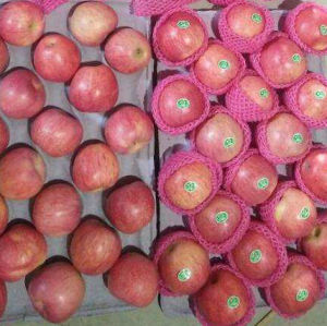 High Quality of New Harvest Fresh Red Qinguan Apple pictures & photos