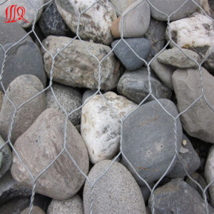 Levee Protection Quality Gabion pictures & photos