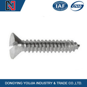 Stainless Steel Philip Drive Type Tapping Screw GB846 Slotted Countersunk Flat Head Tapping Screw pictures & photos