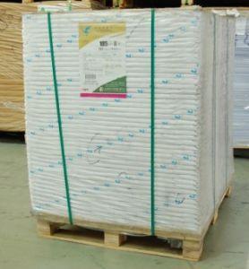 60g Printing Paper