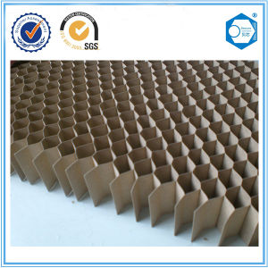 Paper Honeycomb Used for Furniture pictures & photos