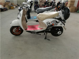 Electric Bike, E Bike Motor, Bicycle Electric Motor 800W pictures & photos