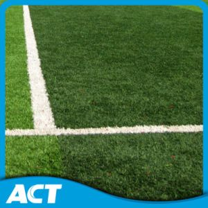 Artificial Grass, Synthetic Turf, Synthetic Grass for Football or Soccer pictures & photos