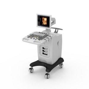Med-Du-Ivis30 Trolley Type Color Doppler Ultrasound Scanner pictures & photos