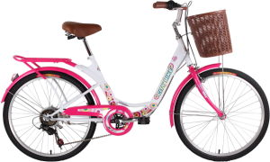 Light Weight and Good Quality Lady Bike