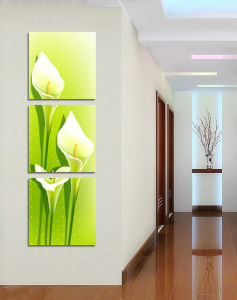 Flower Group Canvas for Decor (SJMD5030)