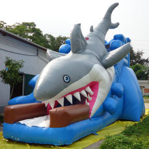 Inflatable Shark Slide for Amusement Park (CYSL-590) pictures & photos