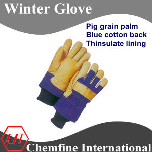 Pig Grain Palm, Blue Cotton Back, Thinsulate Lining Leather Winter Glove pictures & photos