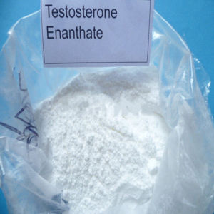 Steroid Powder Testosterone Enanthate for Injectable Bodybuilding pictures & photos