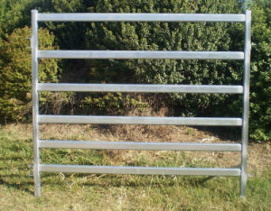 Heavy Duty Steel Tube Galvanized Cattle Yard Panel pictures & photos