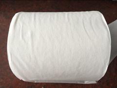 Pure Virgin Pulp Toilet Paper pictures & photos