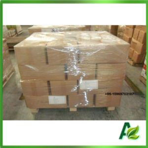 Feed Additives Sodium Butyrate Powder for Animal Attractive pictures & photos