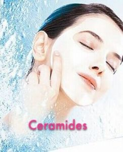 (Ceramides) --- Moisturizing Function Anti-Aging Ceramides pictures & photos