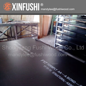 F17 1200*2400*17mm Structural Plywood for Australia Market pictures & photos