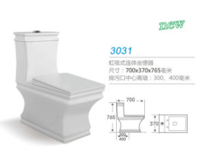 Siphon Jet One Piece Toilet 3031