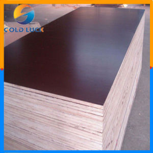 Shuttering Film Faced Marine Construction Plywood pictures & photos
