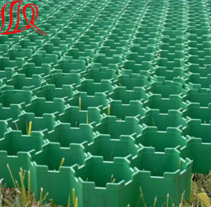 Plastic Grass Grid pictures & photos