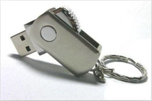 Hot-Selling Customized Logo Metal Swivel USB Flash Drive pictures & photos