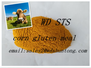 Protein Powder Corn Gluten Meal for Fodder with High Quality pictures & photos