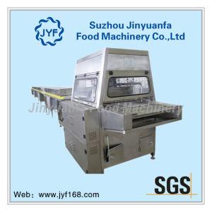 Chocolate Machine-Chocolate Enrobing Machine/Coating Machine (QTYJ600) pictures & photos