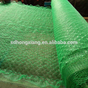 Plastic 3D Geomat (Erosion geomat) for Erosion Control pictures & photos