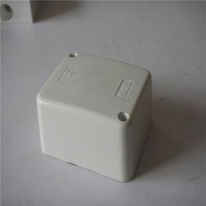 Electric Box (ASNZS2053.2: 2001) pictures & photos
