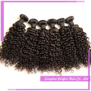 100% Vrigin Remy Human Yaki Curly Hair pictures & photos